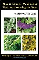 Noxious Weeds That Harm Washington State