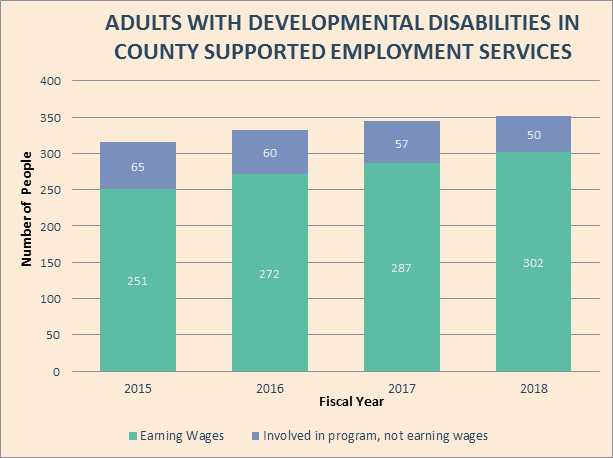 Development Disabilities Employment programs