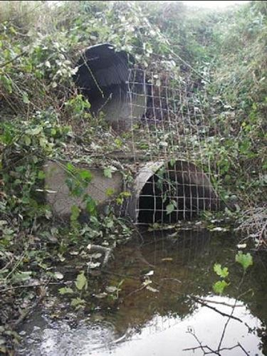 AppelCulvert_before1